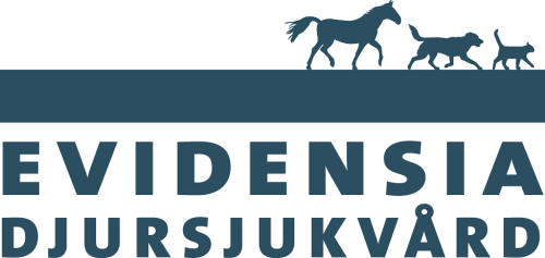 <p>Evidensia bildades 2012 n&auml;r fyra svenska djursjukhus gick samman. Idag har man 60 verksamheter som bedriver sjukv&aring;rd f&ouml;r h&auml;st och sm&aring;djur i Sverige. F&ouml;r ett bolag som v&auml;xer genom f&ouml;rv&auml;rv &auml;r det viktigt att skapa en k&auml;nsla av gemenskap.&nbsp;<strong>M&ouml;t Pia Madsen, HR Chef f&ouml;r Evidensia Sverige.</strong></p>